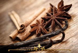 Cinnamon Vanilla Scented Candles
