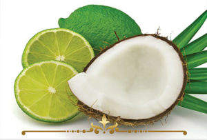 Coconut Lime Scented Candles