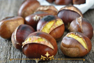 Roasted Chestnuts Scented Candles